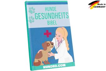 Gesundheitsbibel